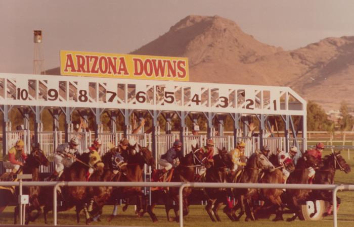 Arizona Downs starting gate