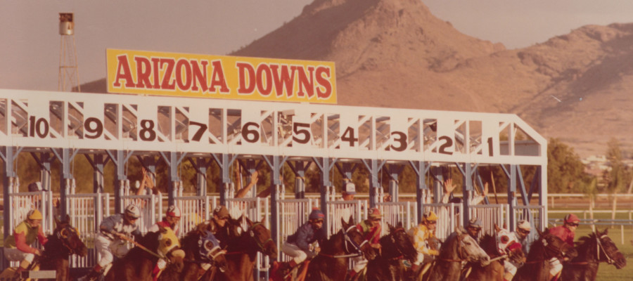 Arizona Downs starting gate