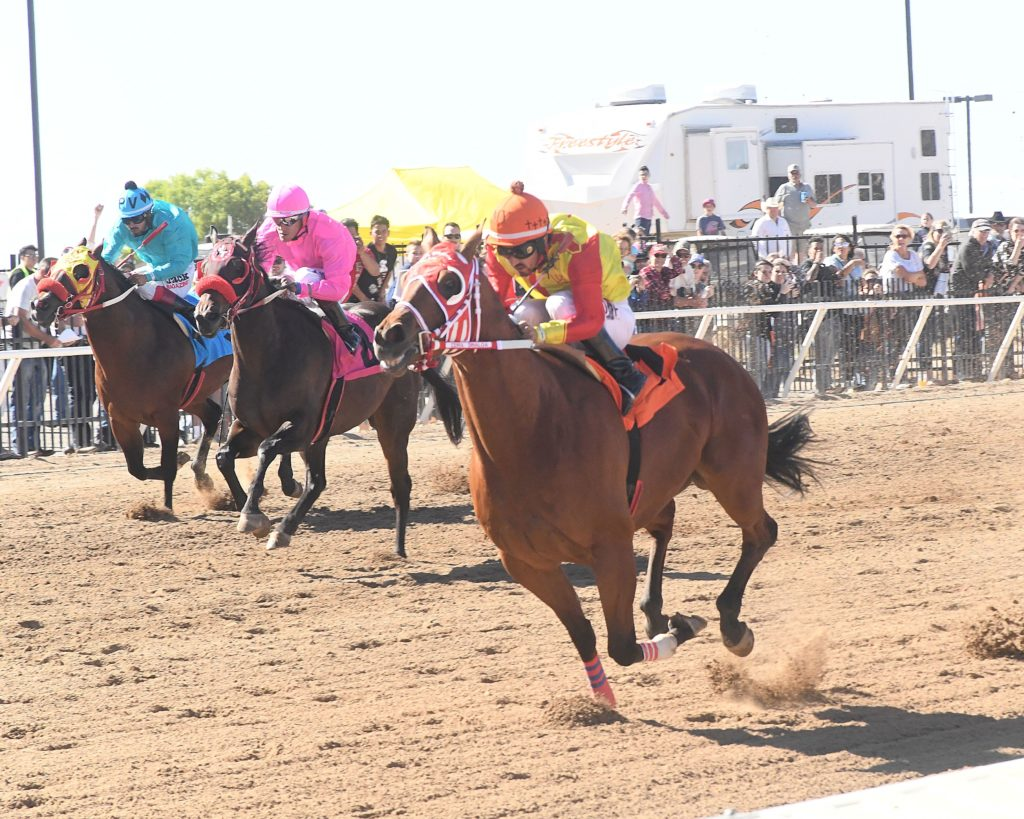 Three horses racing side-by-side in front of stands.