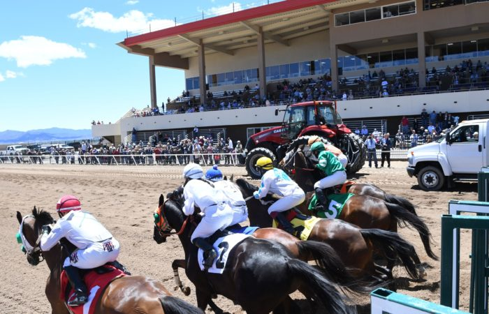 Race horses breaking from the starting gate.
