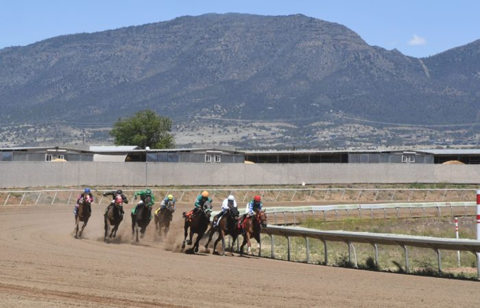 Race horses rounding the final turn into the stretch