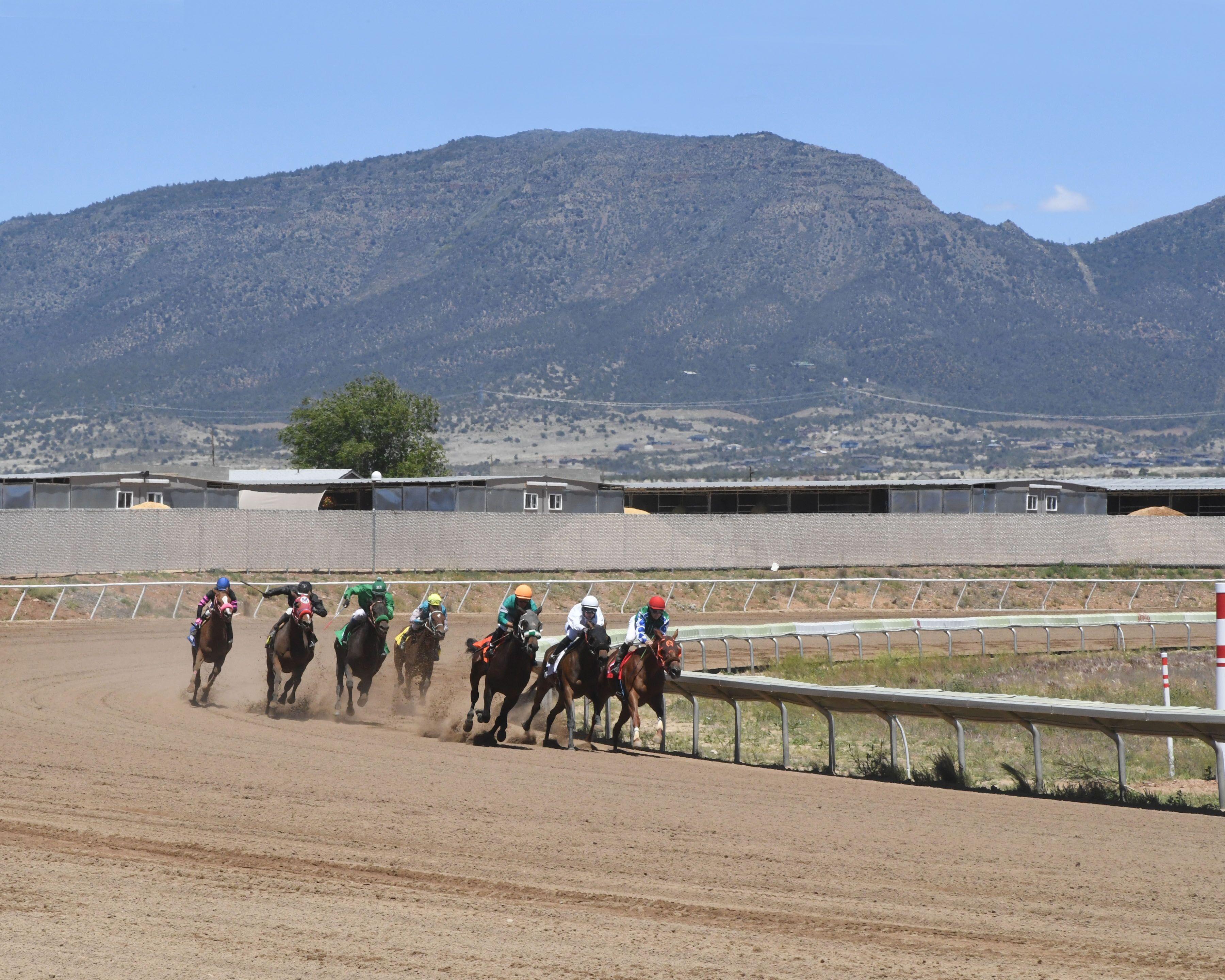 Live Racing   Arizona Downs