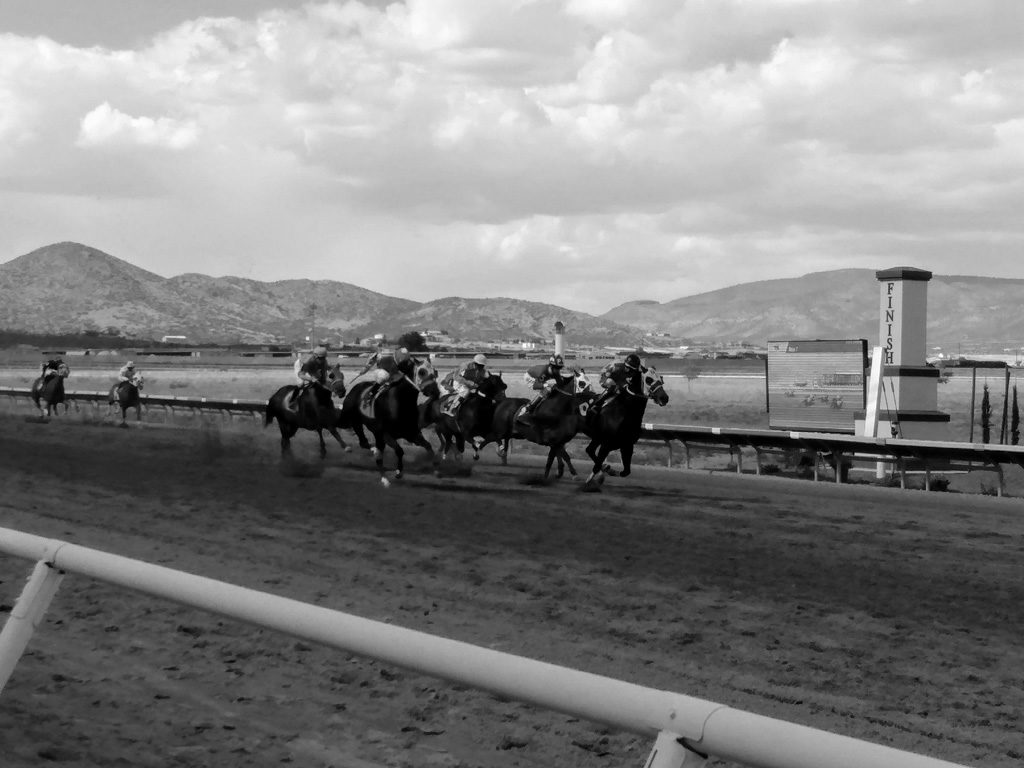 Black and White photo of horses racing