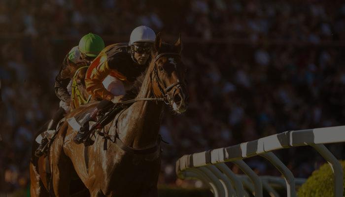 Racing Terminology | New Fans | Arizona Downs Racetrack