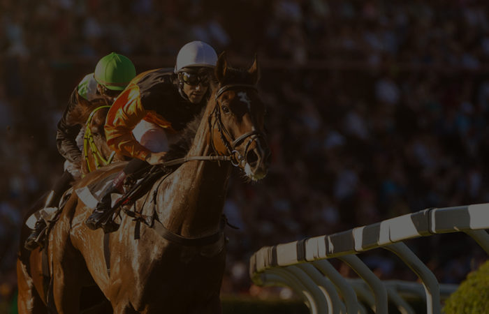 Racing Terminology | New Fans | Arizona Downs Racetrack